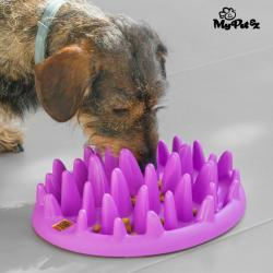 Comedero Interactivo para Mascotas Slow Food Bowl My Pet Ez - Imagen 1